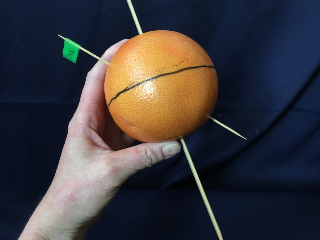 Step 7: push another cocktail stick into the orange, directly opposite the UK marker